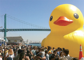 Worlds largest rubber duck